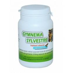 GYMNEMA SYLVESTRE MEDICER 180 CAPSULE